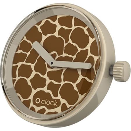o clock safari giraffe