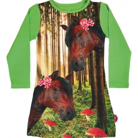 Jurkje paarden in het woud
