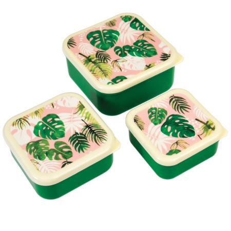 Tropical palm snack potjes