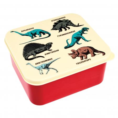 Lunch box prehistoric land (1)