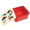 Lunch box prehistoric land (2)