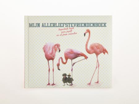 vriendenboek flamingo