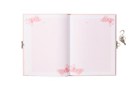 dagboekje alpaca2