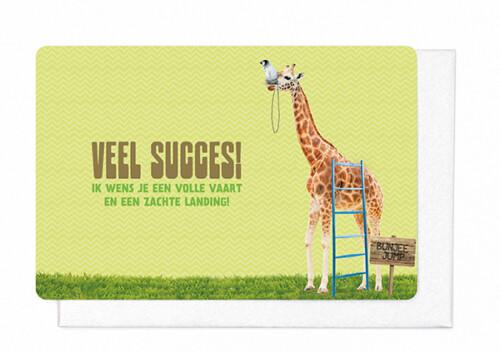 [V1881] VEEL SUCCES